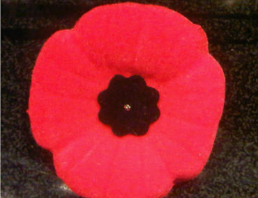 Remembrance Day For the Kids