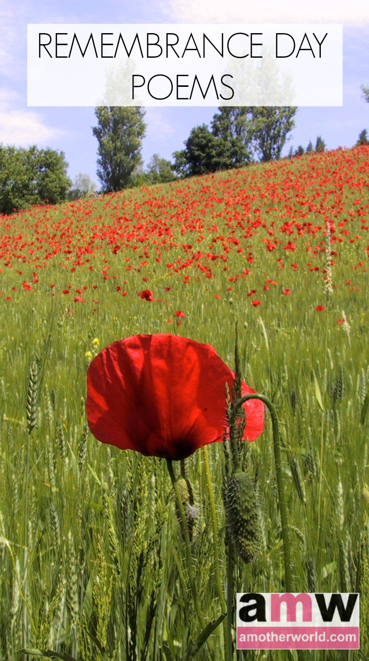 Remembrance Day Poems | amotherworld | www.amotherworld.com