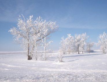 In a Winter Slump