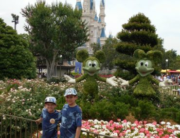 What's New at Disney World in 2016