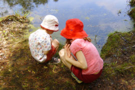 What is Unschooling and Who Does That? amotherworld.com