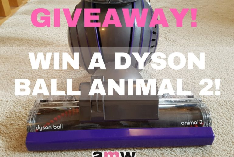 Win a Dyson Ball Animal 2 on amotherworld
