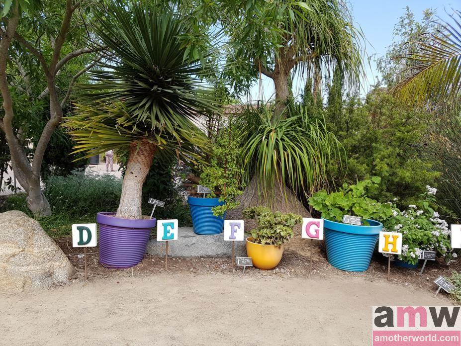San Diego is a Fun Destination for the Family - Botanic Garden