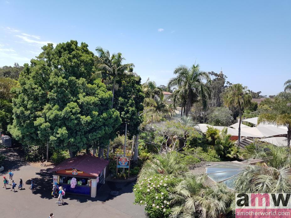 San Diego is a Fun Destination for the Family San Diego Zoo Gondola