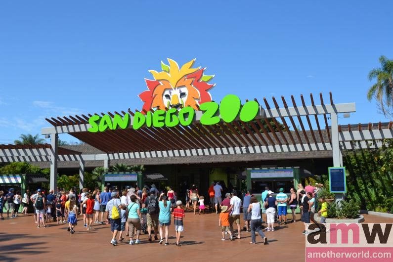 San Diego is a Fun Destination for the Family San Diego Zoo