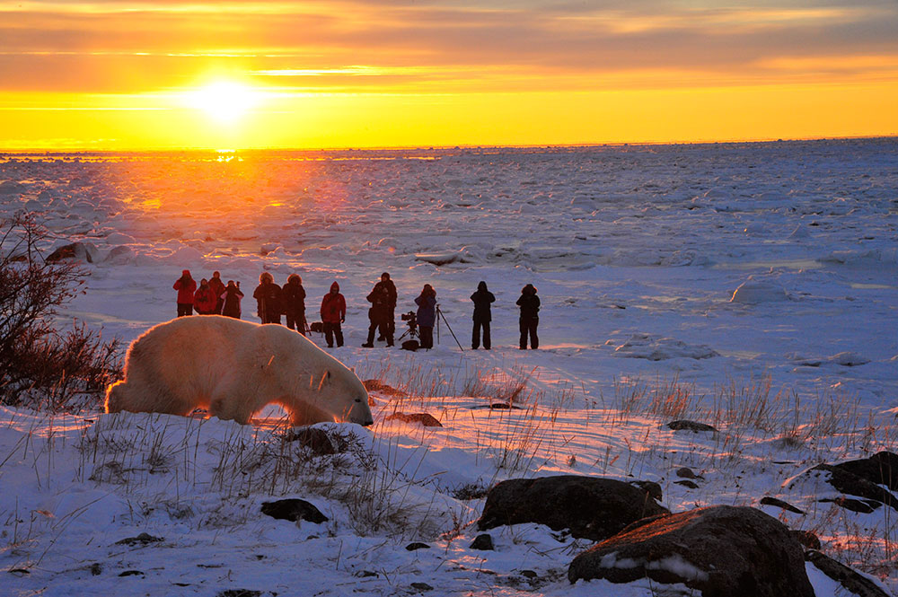 Lesser Known Canadian Travel Destinations to Visit - Churchill Manitoba