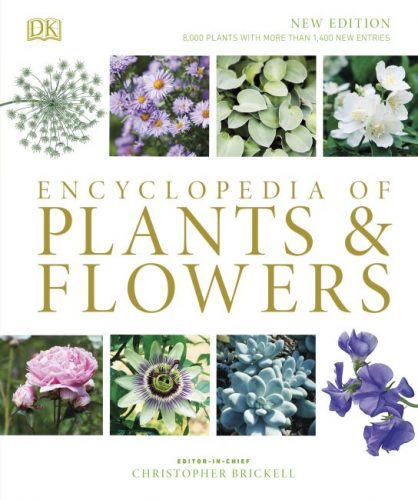Holiday Gift Guide for Self-Care Love - Encyclopedia of Plants and Flowers - amotherworld.com