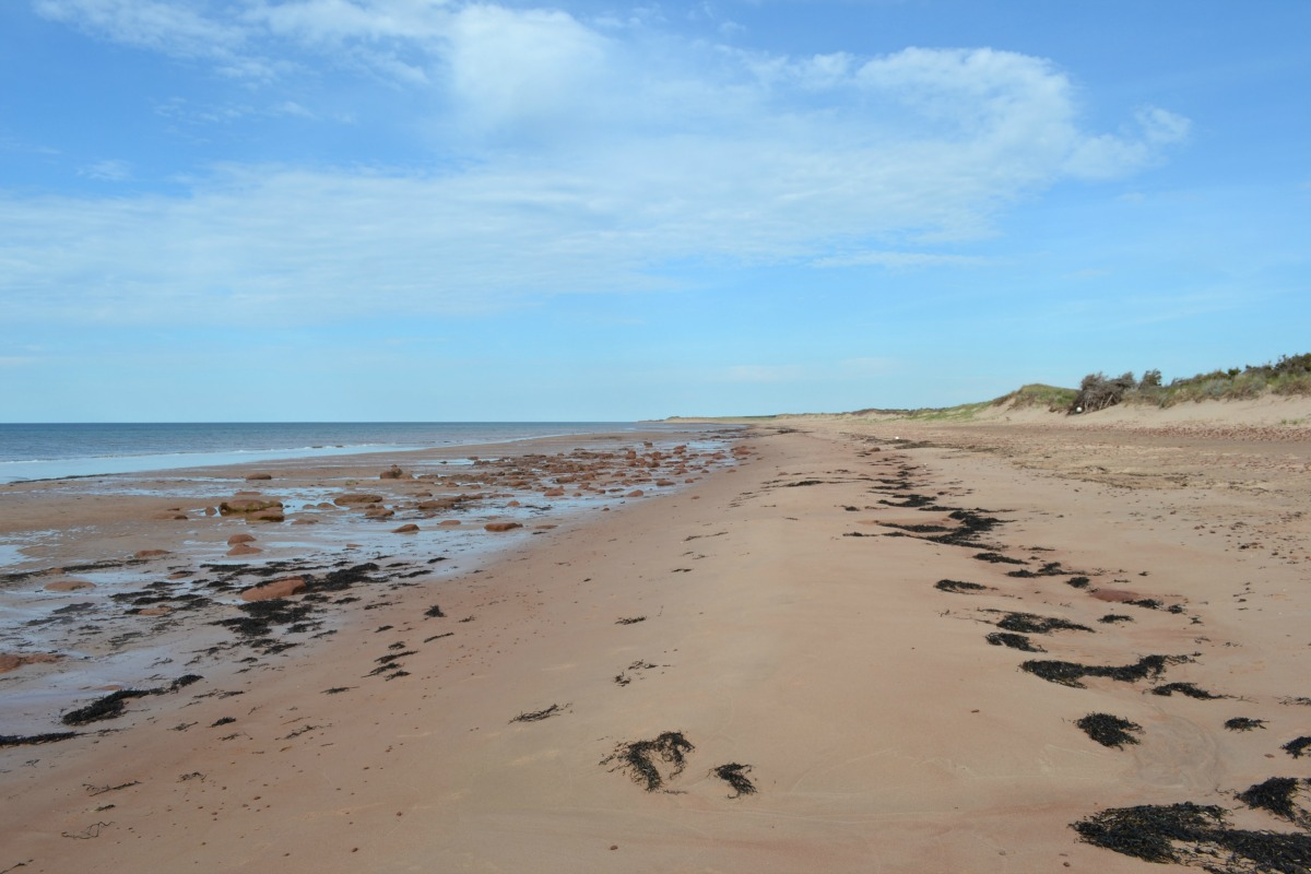 Prince Edward Island National Park - Must Visit Canadian National Parks | amotherworld.com